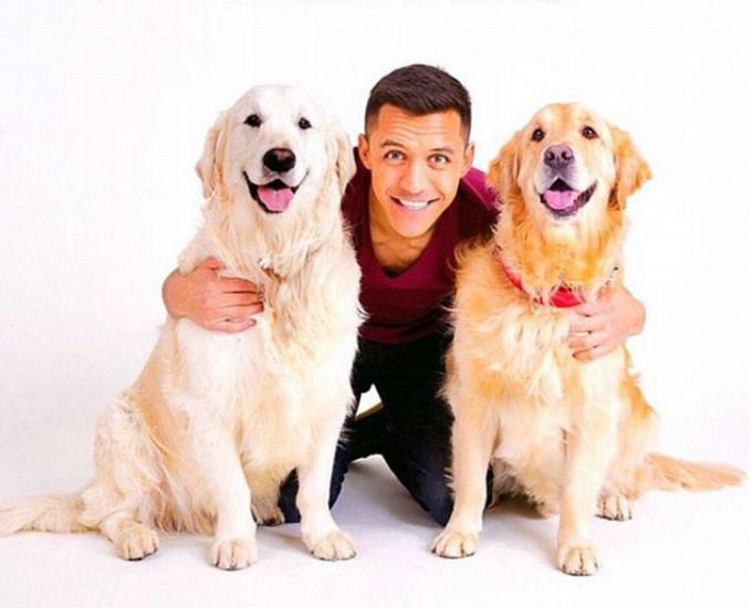 Самые известные собаки футбольных звезд
