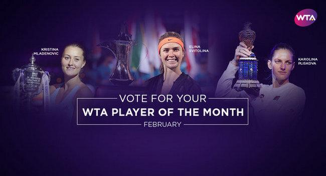 Свитолину номинировали сразу на две премии WTA
