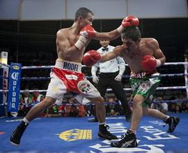 Омар Нино завоевал титул WBC