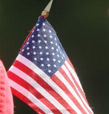 Фергюсон берет ветеранов в тур по Америке