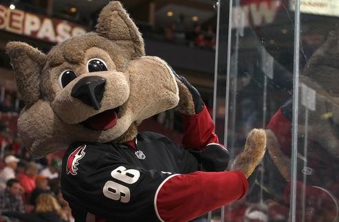 НХЛ. Финикс все еще находится под угрозой переезда