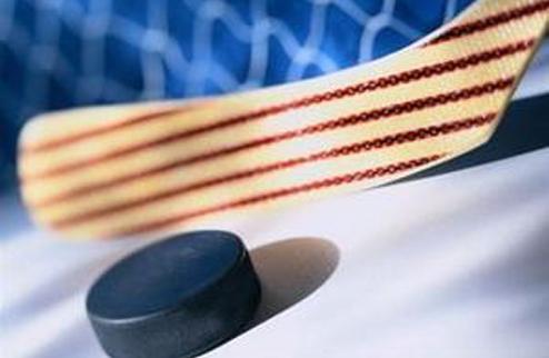 Профессиональной хоккейной лиге — быть!