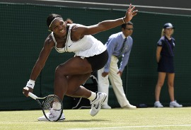������ ������� �������� 28 ����� ������ �� US Open