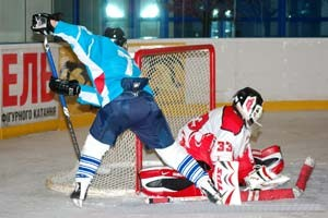 Гайдамаки заявили 19 хоккеистов
