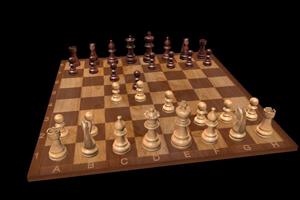 Шахматы. Ничейный синдром захлестнул Москву