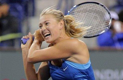 ������-����� (WTA). ��������� �������� ��������� � ��������