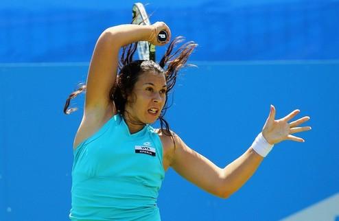 ������� (WTA). ������ � ���������� � ����������