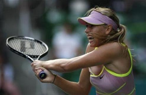 ����� (WTA). ������������ ������ �������� � ��������