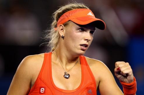����� (WTA). �������� � ������