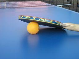 Настольный теннис. ЧМ-2013. Украинские пары терпят неудачу