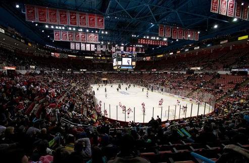 НХЛ. Детройт намерен построить новую арену
