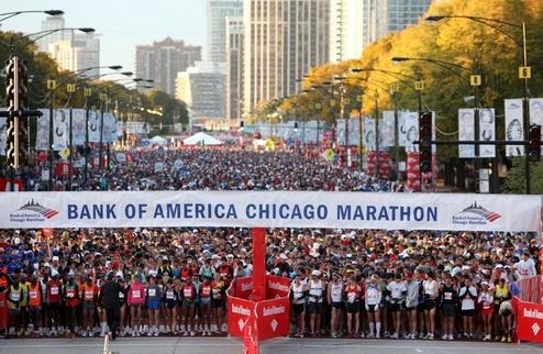 World Marathon Majors. ������