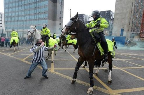 Год тюрьмы болельщику за удар полицейской лошади. ВИДЕО