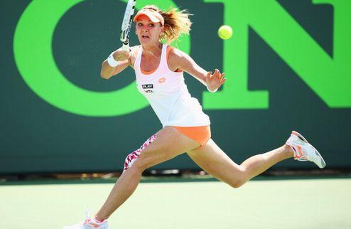 ������ (WTA). ����� �����������, �������� �������������� �������