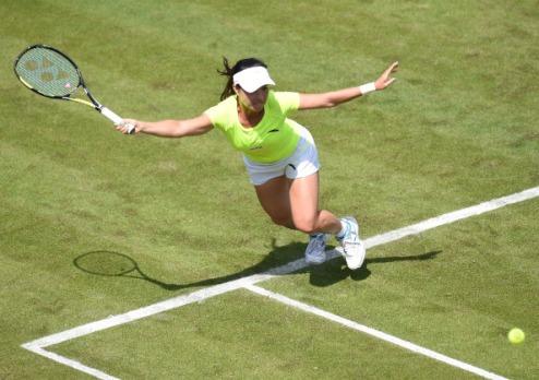 ����������� (WTA). ��� ���� � ��������� ��������� �����