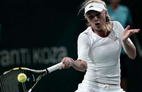 ������� (WTA). ������� ������ ��������