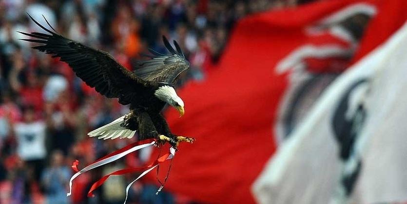Бенфика третий раз подряд стала чемпионом Португалии