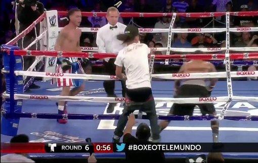 Болельщик помог боксеру выиграть бой, выбежав на ринг